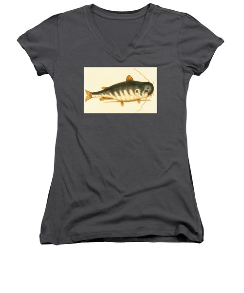 Catfish Women's V-Neck T-Shirt (Junior Cut) by Mark Catesby