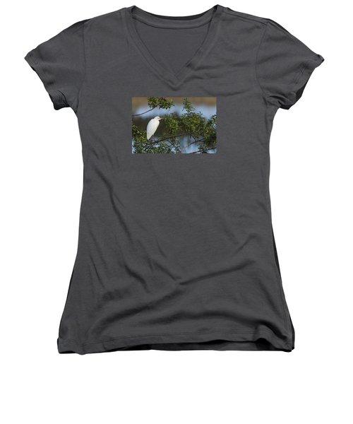 Cattle Egret In The Morning Light Women's V-Neck T-Shirt