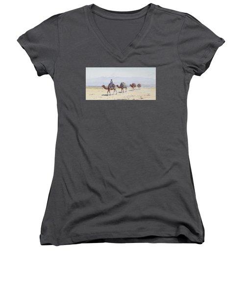 Cavalcade Women's V-Neck T-Shirt (Junior Cut) by Richard