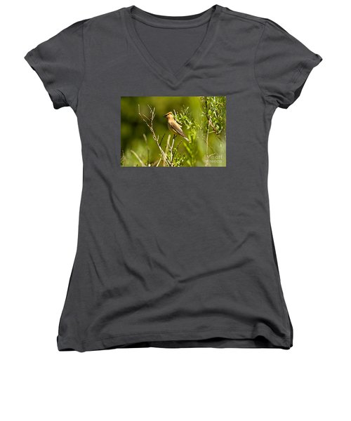 Cedar Waxwing At Glacier Women's V-Neck T-Shirt