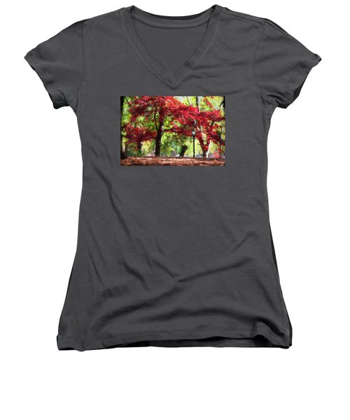 Central Park In Manhattan Women's V-Neck (Athletic Fit)