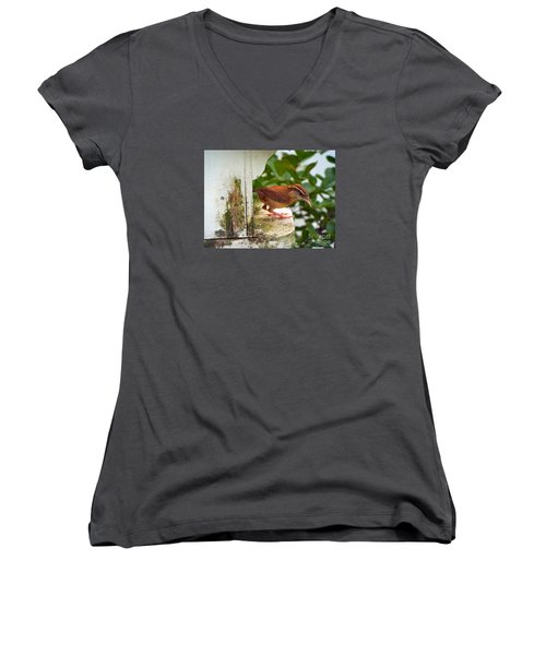 Checking Out New Digs Women's V-Neck T-Shirt (Junior Cut) by Audrey Van Tassell