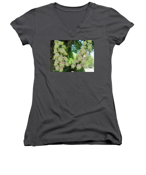 Chestnut Tree Flowers Women's V-Neck T-Shirt (Junior Cut) by Paul Meinerth