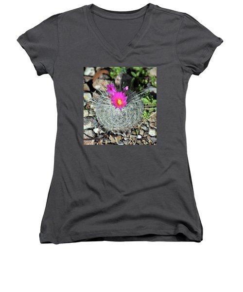 Chihuahua Snowball 3 Women's V-Neck T-Shirt