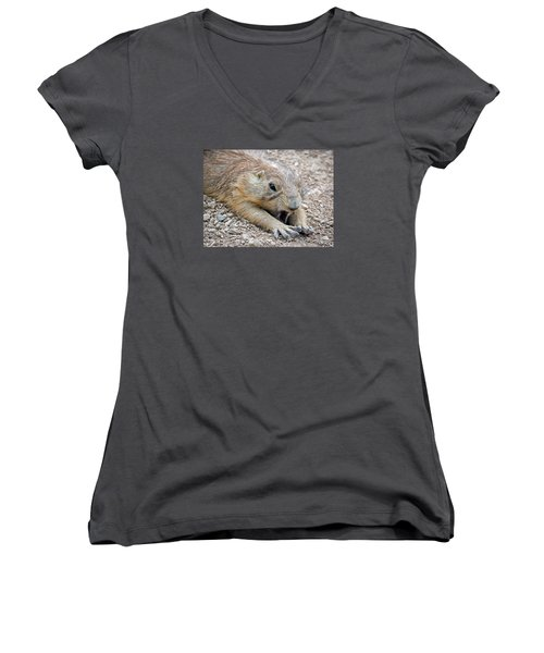 Chillin' Prairie Dog Women's V-Neck T-Shirt (Junior Cut) by Elaine Malott
