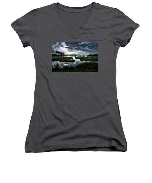 Chincoteague Women's V-Neck T-Shirt (Junior Cut) by Ronda Ryan