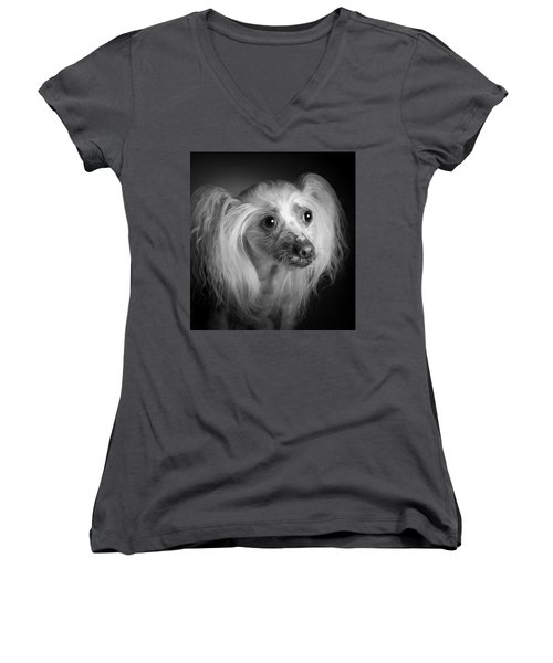 Chinese Crested - 04 Women's V-Neck T-Shirt