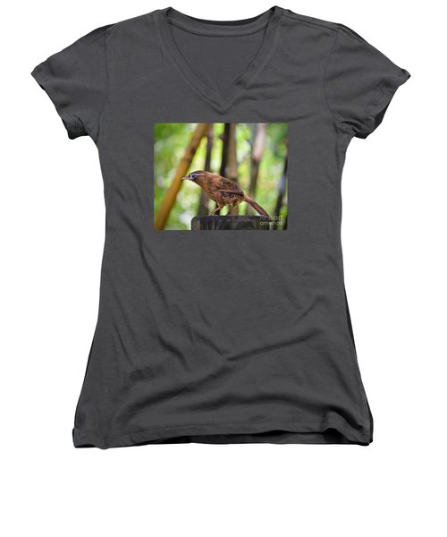 Chinese Hwamei  Edition 2 Women's V-Neck T-Shirt
