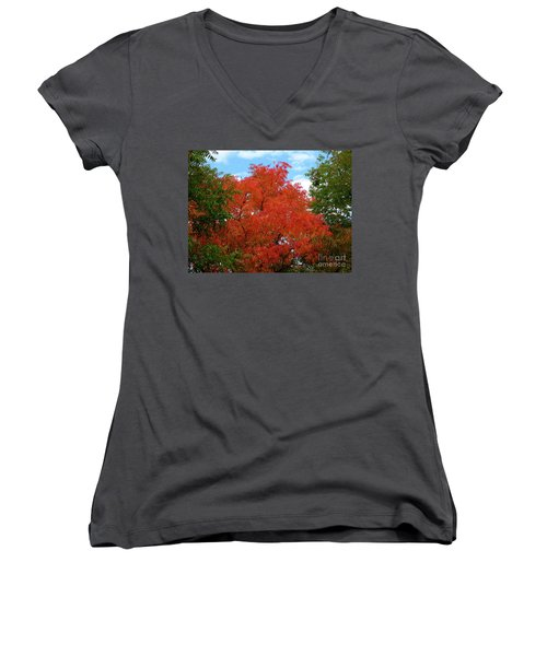 Chinese Pistache Fall Color Women's V-Neck T-Shirt