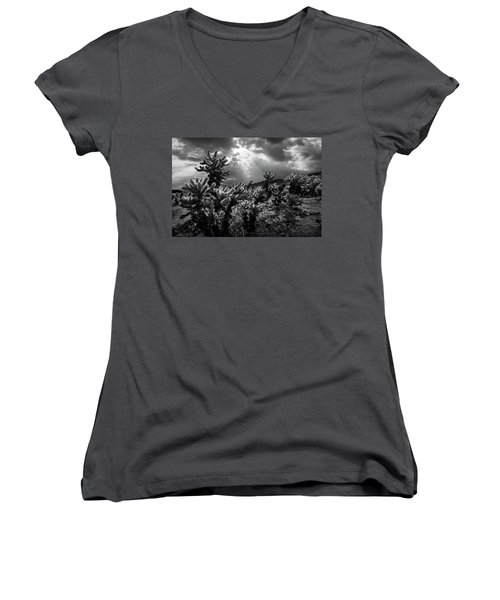 Women's V-Neck T-Shirt (Junior Cut) featuring the photograph Cholla Cactus Garden Bathed In Sunlight In Black And White by Randall Nyhof