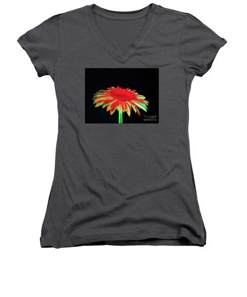 Christmas Daisy Women's V-Neck T-Shirt