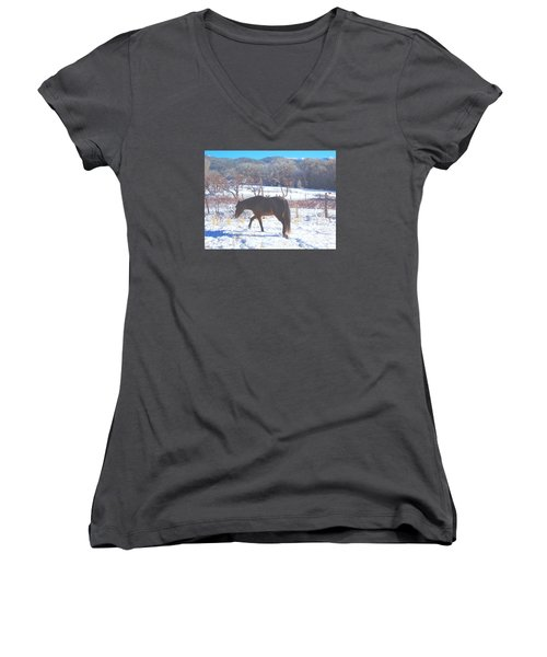 Women's V-Neck T-Shirt (Junior Cut) featuring the photograph Christmas Roan El Valle I by Anastasia Savage Ealy