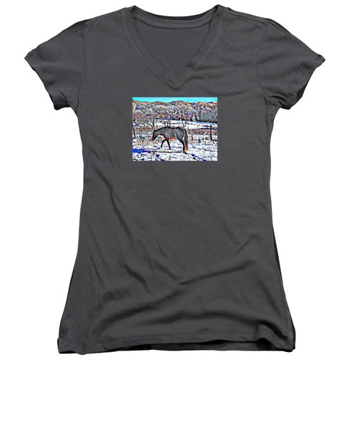Women's V-Neck T-Shirt (Junior Cut) featuring the photograph Christmas Roan El Valle II by Anastasia Savage Ealy