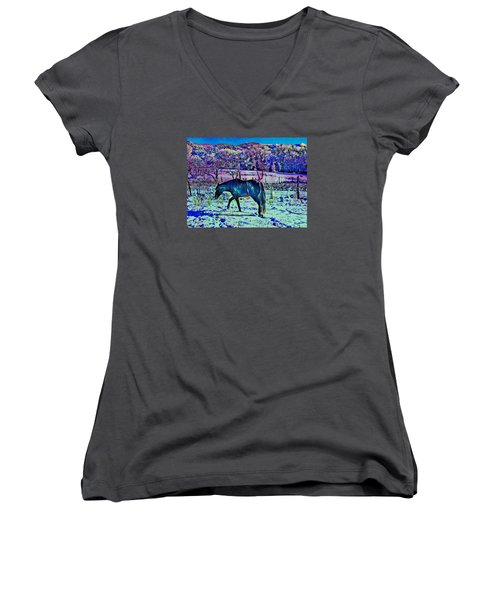 Women's V-Neck T-Shirt (Junior Cut) featuring the photograph Christmas Roan El Valle Iv by Anastasia Savage Ealy