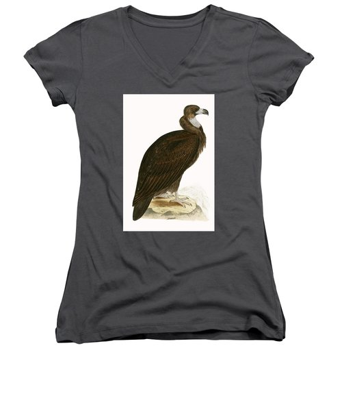 Cinereous Vulture Women's V-Neck T-Shirt (Junior Cut) by English School