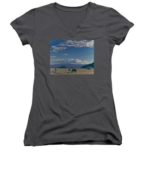Classic Country Scene Women's V-Neck (Athletic Fit)