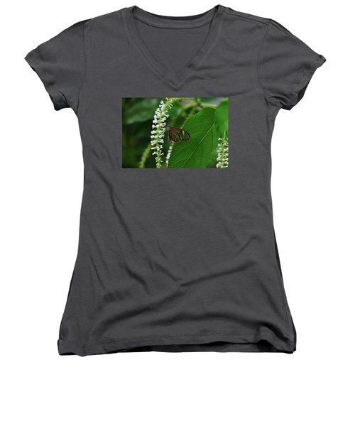 Clearwing Butterfly Women's V-Neck T-Shirt (Junior Cut) by Ronda Ryan