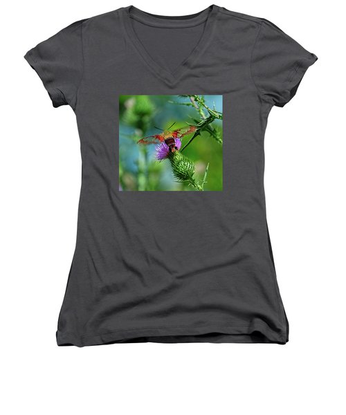 Clearwing Hummingbird Moth Women's V-Neck (Athletic Fit)
