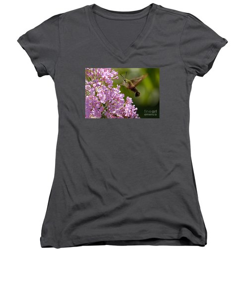 Clearwing Pink Women's V-Neck