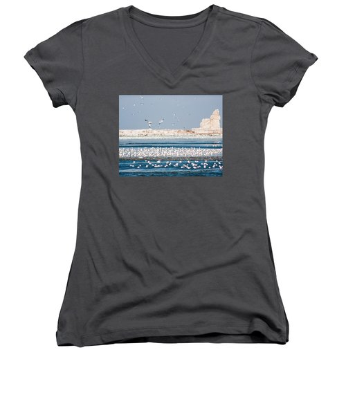 Cleveland Lighthouse In Ice  Women's V-Neck