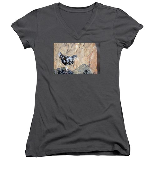 Cliffside Ptarmigan Women's V-Neck T-Shirt