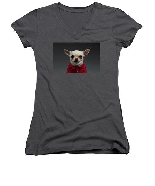 Closeup Portrait Chihuahua Dog In Stylish Clothes. Gray Background Women's V-Neck T-Shirt (Junior Cut) by Sergey Taran