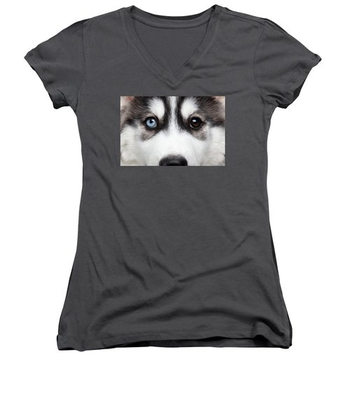 Women's V-Neck featuring the photograph Closeup Siberian Husky Puppy Different Eyes by Sergey Taran