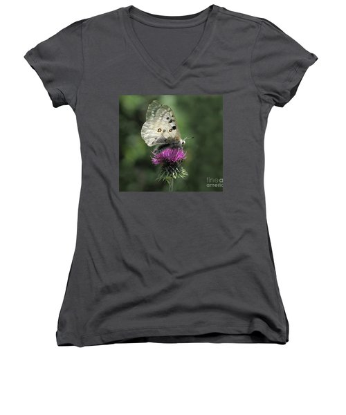 Women's V-Neck T-Shirt (Junior Cut) featuring the photograph Clouded Apollo Butterfly by Jacqi Elmslie