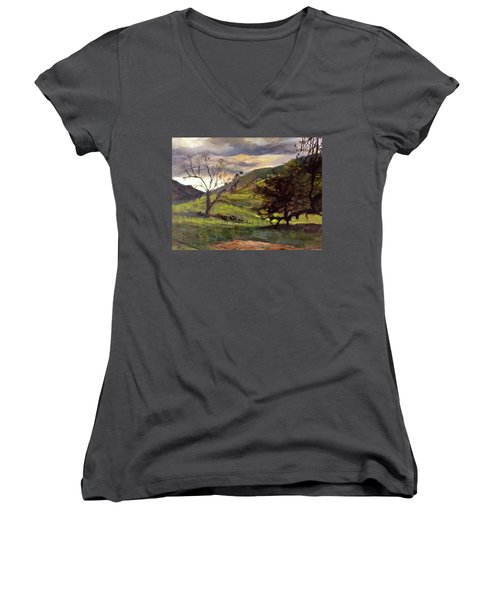 Clouds And Cattle Women's V-Neck T-Shirt