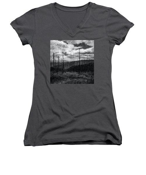 Cloudscape 3 Women's V-Neck T-Shirt