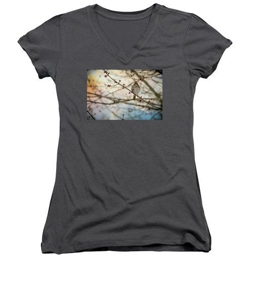 Cloudy Finch Women's V-Neck T-Shirt (Junior Cut) by Trish Tritz