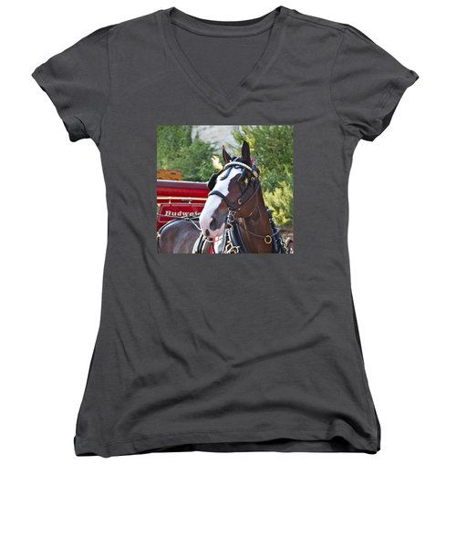 Clydesdale At Esp Women's V-Neck (Athletic Fit)