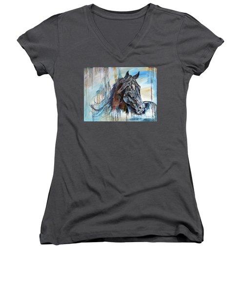 Coat Of Many Colors Women's V-Neck T-Shirt