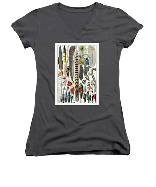 Collection Of Different Plume Types Women's V-Neck