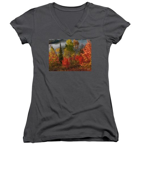 Color And Light Women's V-Neck T-Shirt