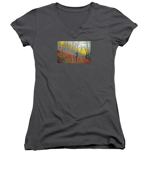 Color Fall Women's V-Neck (Athletic Fit)