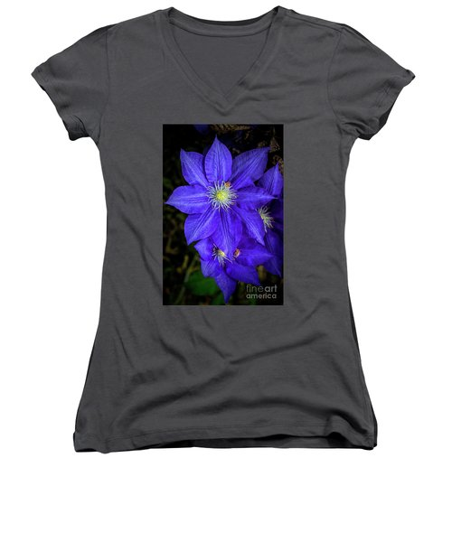 Color Me Purple Women's V-Neck (Athletic Fit)