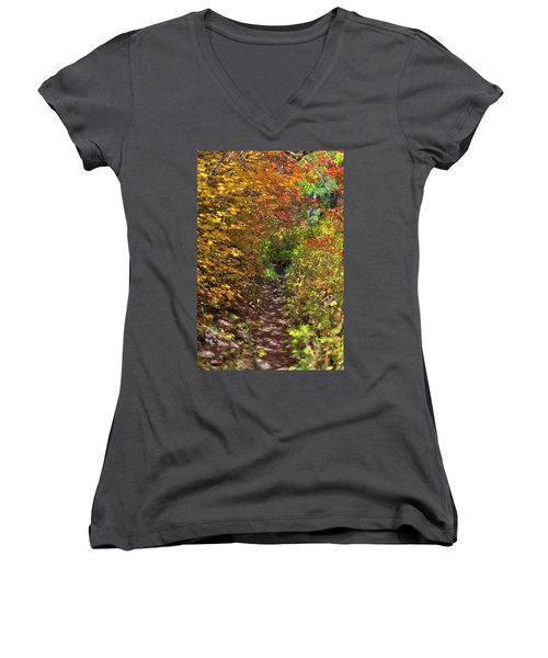 Cascade Mountain Range Color Vortex Women's V-Neck