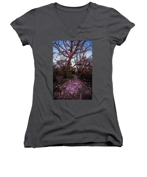 Colorado Bend State Park Gorman Falls Trail #3 Women's V-Neck T-Shirt (Junior Cut)