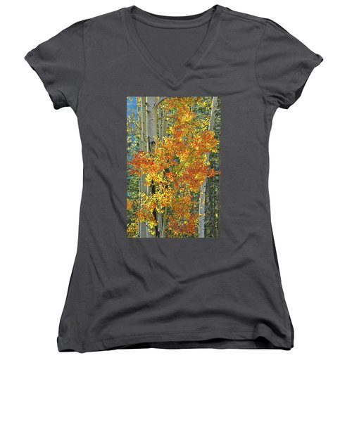 Colorful Aspen Along Million Dollar Highway Women's V-Neck