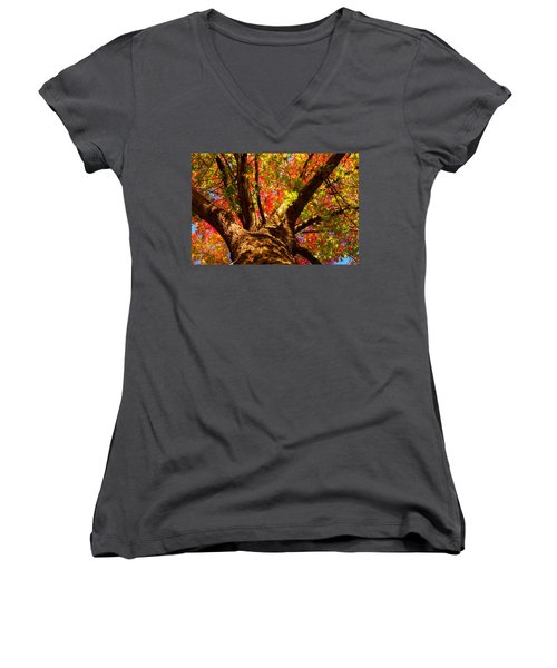 Colorful Autumn Abstract Women's V-Neck