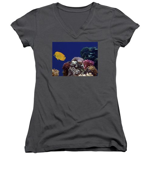 Colorful Coralreef Women's V-Neck