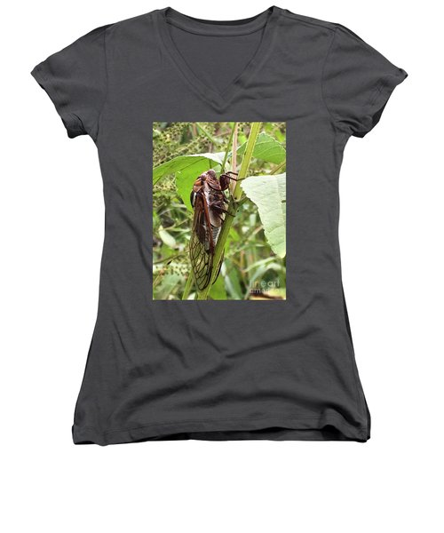 Colorful Summer Cicada Women's V-Neck