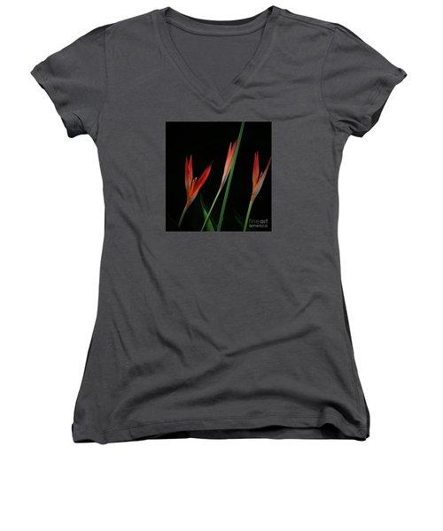 Colorful Trio Women's V-Neck T-Shirt (Junior Cut) by Pamela Blizzard