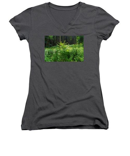 Colors Of A Forest In Vogelsberg Women's V-Neck