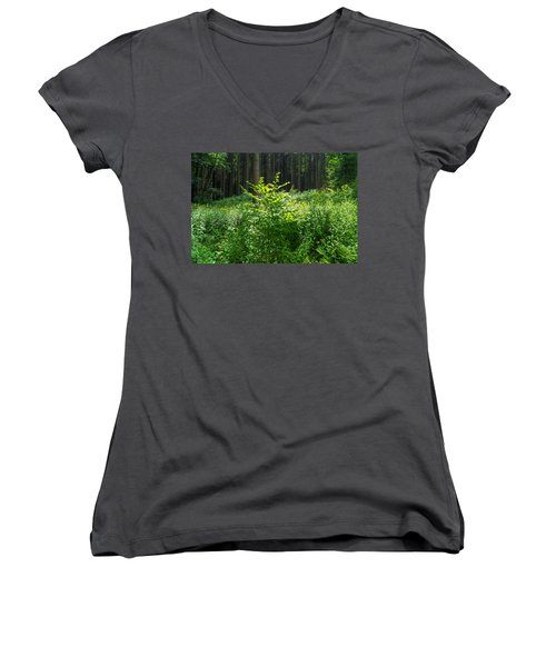 Colors Of A Forest In Vogelsberg Women's V-Neck