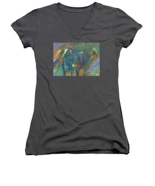 Colors Of The Southwest Women's V-Neck T-Shirt (Junior Cut) by Frances Marino