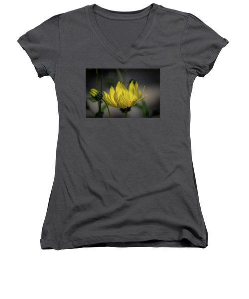 Colour Of Sun Women's V-Neck (Athletic Fit)