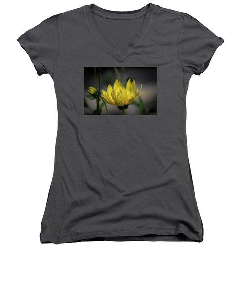 Colour Of Sun Women's V-Neck T-Shirt