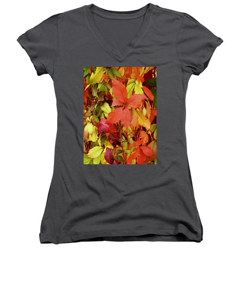 Colours Of Autumn Women's V-Neck (Athletic Fit)